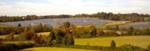 Solar and Trees living in harmony in North Carolina
