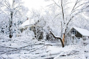 Downed power lines? No problem, as long as you're the neighbor with the silent backup power system.