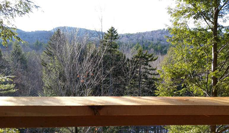 View out the back deck from Rob's treehouse.