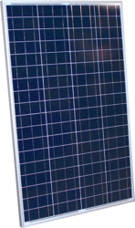 altE 100 Watt 12V Poly Solar Panel