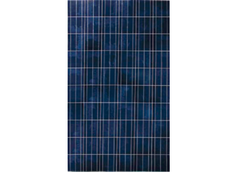 Canadian Solar Cs6p 250p 250 Watt Poly Solar Panel