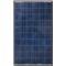 Canadian Solar CS6P-255P 255 Watt Poly Solar Panel, Black Frame