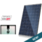 Canadian Solar 255 Watt Smart Module with SolarEdge Optimizer