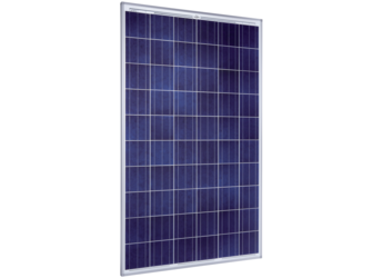 solarworld sunmodule pro sw250 poly 250 watt solar panel. Black Bedroom Furniture Sets. Home Design Ideas